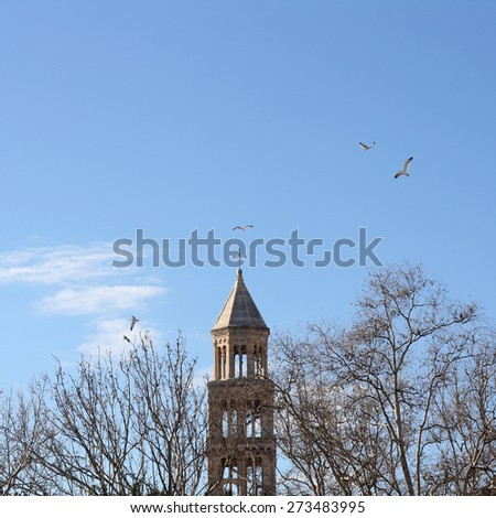 Saint Domnius bell tower in Split, Croatia. Surrounded by trees and birds. Natural light. - stock photo