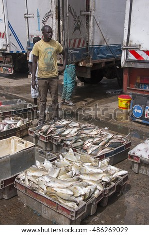 SAINT LOUIS, SENEGAL - MAY 29, 2014: A dockworker , preparing to load boxes of fish in refrigerated trucks