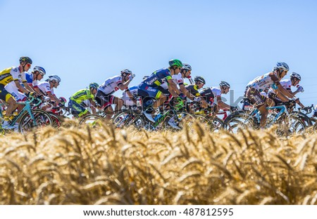 SAINT-QUENTIN-FALLAVIER,FRANCE - JUL 16: The peloton riding in a wheat plain during the stage 14 of Tour de France 2016.