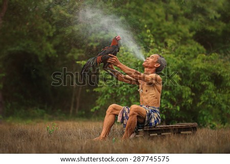 Sakon, Thailand - May 16 : Man cleaning Thai gamecock on May 16, 2015 in Sakon, Thailand - stock photo
