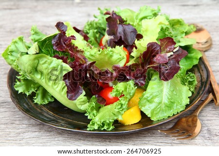 Salad. Colorful salad. Salad plate on wood table. Vegetarian salad. - stock photo