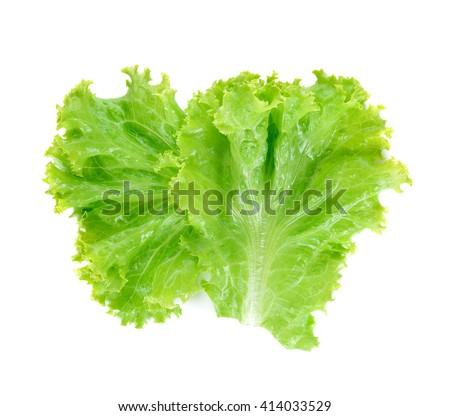 Salad leaf. Lettuce isolated on white background. - stock photo