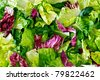 Salad leaves with lettuce, radicchio, and rocket as a background - stock photo