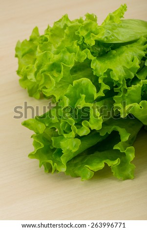 Salad lettuce leaves on the wood background