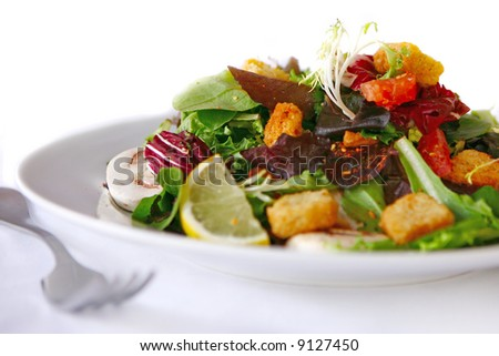 Salad on a Bright Clean Background - stock photo