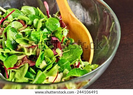 Salad prepared from young leaves of different salads, mix of peppers, ground nuts, and oil and apple vinegar - stock photo