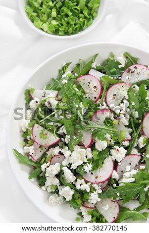 Salad with arugula, cottage cheese, radish and red onion - stock photo