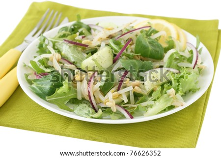 salad with bean sprout