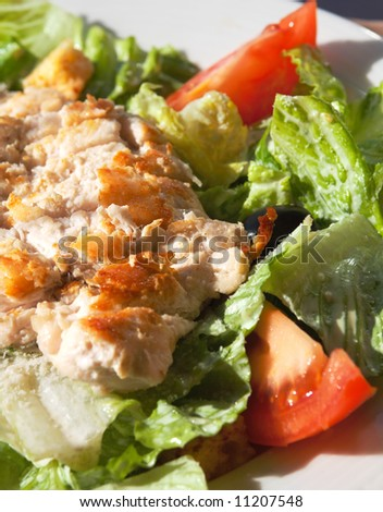 "salad with chicken meat, tomato, olive and lettuce;  ""caesar"" ; shallow DOF; focus on meat"