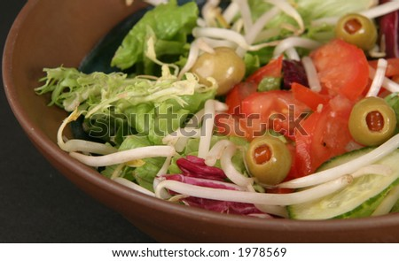 Salad with chopped tomatoes - stock photo