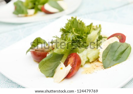 salad with mozzarella, tomatoes and basil - stock photo