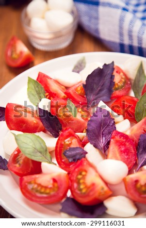 salad with mozzarella,tomatoes and fresh basil in studio