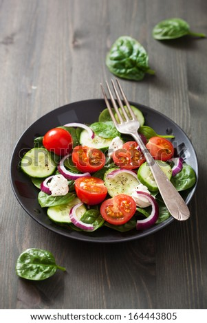 salad with tomatoes cucumber and goat cheese  - stock photo