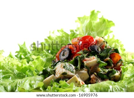 Salad with Vegetables on a Plate. Isolated on White Background