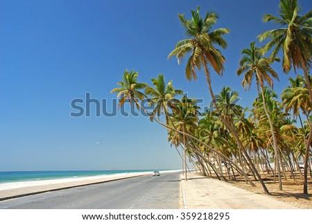 Salalah coast, Oman, Asia, Arabian Peninsula - stock photo