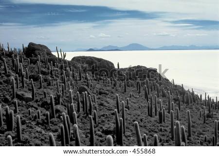 Salar de Uyuni, the largest salt flat of the world in Bolivia - stock photo