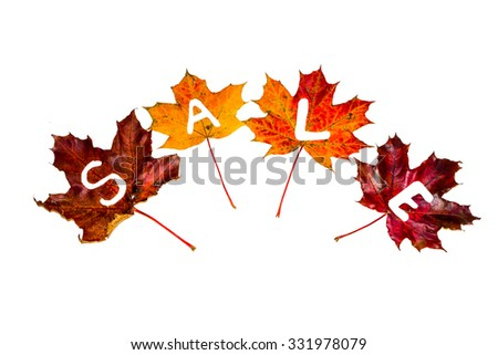 SALE. Seasonal sales. Word sale made of autumn leaves - stock photo