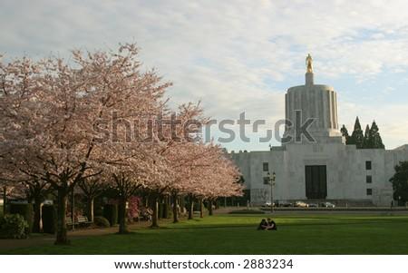 Salem Capitol - stock photo