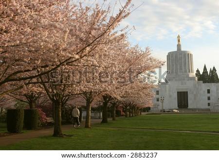 Salem, Oregon in Spring - stock photo