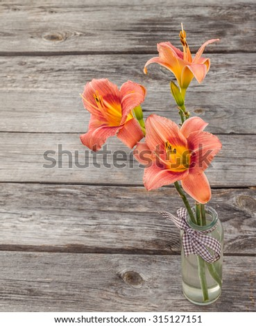 Salmon-colored Daylily (hemerocallis) on a wooden background - stock photo