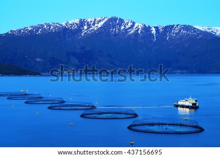 Salmon farm in a fjord between snowy mountains during a summer night in Western Norway - stock photo