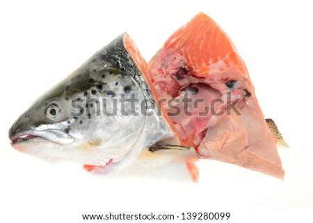 Salmon Fish Head - stock photo