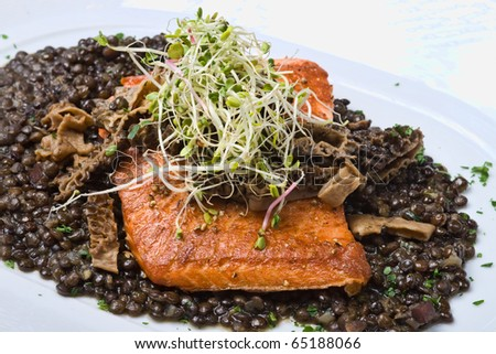Salmon on lentils with sprouts