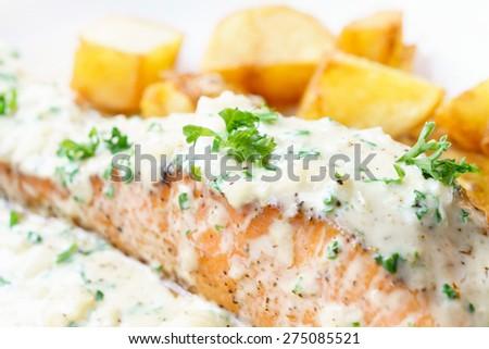 salmon steak cream sauce - stock photo