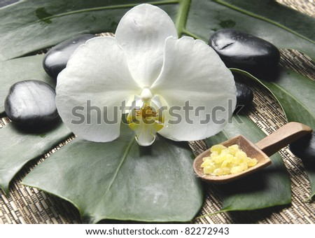 salt bath in wooden bowl with orchid and stones on monstera leaf