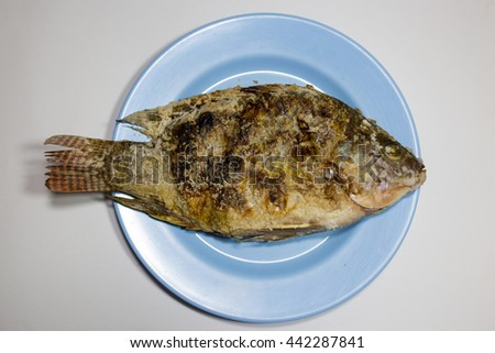 Horny plates stock photos royalty free images vectors for Fish in pussy