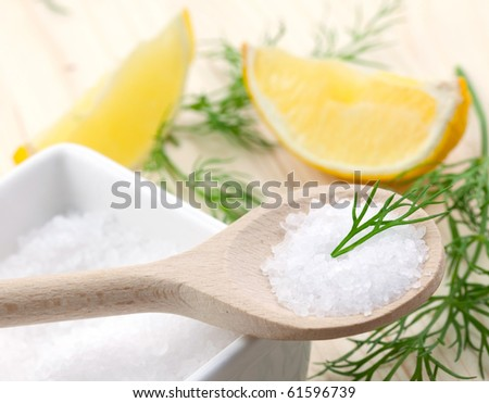 salt, dill and lemon on table - stock photo