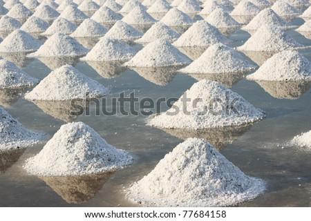 Salt farm in Thailand - stock photo