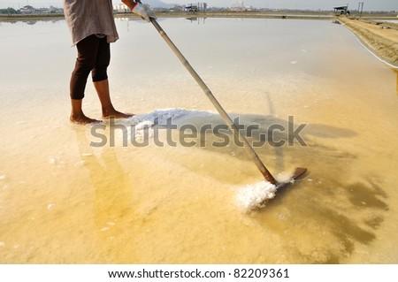 Salt farm in Thailand, Asia - stock photo