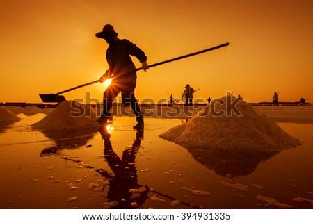 Salt farm with Sunrise in Samutsongkram Province,Thailand - stock photo