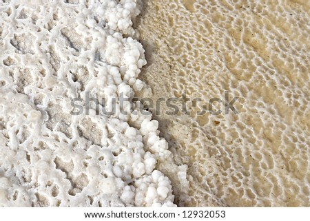 Salt from the dead sea - stock photo