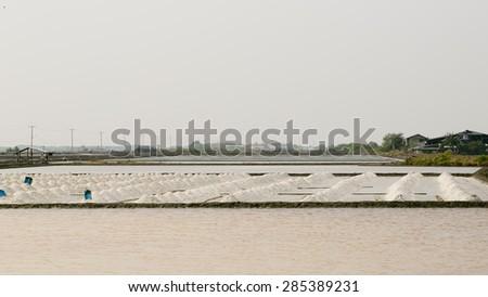 Salt mountain in salt pan on Thailand. - stock photo