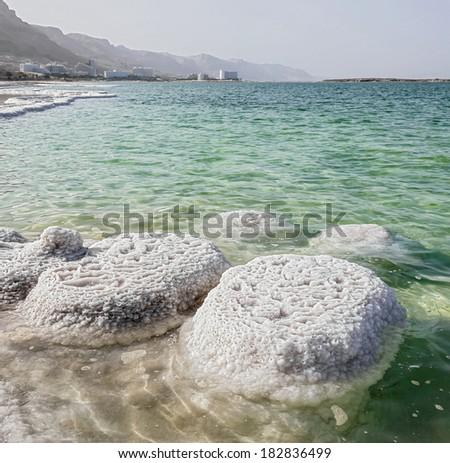Salt nodules (mushrooms) on the shores of the Dead sea - Israel - stock photo