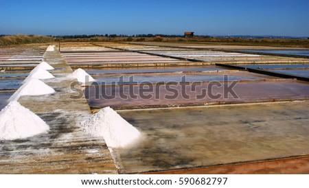 Salt pans on a saline exploration, Figueira da Foz, Portugal