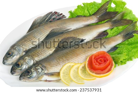 Salted fish - grayling on a platter with lemon, lettuce and tomato from a rose - stock photo