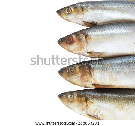 Salted herring fish  - stock photo