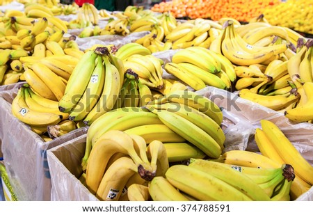 SAMARA, RUSSIA - MAY 25, 2015: Fresh bananas ready for sale in the supermarket Magnit. One of largest retailer in Russia - stock photo