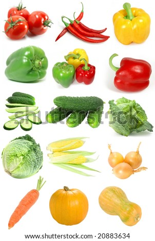 Sampler of nice different vegetables isolated over white