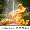 Samson - the central fountain palace and park ensemble in Peterhof, Russia. - stock photo