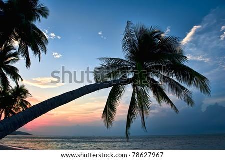 Samui island at sunset - stock photo