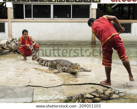 SAMUTPRAKARN,THAILA ND - AUGUST 2: crocodile show at crocodile farm on August 2, 2014 in Samutprakarn,Thaila nd. This exciting show is very famous among among tourist and Thai people