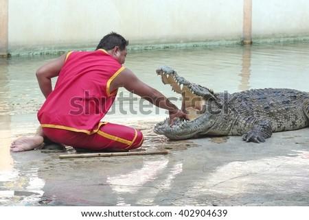 SAMUTPRAKARN-THAILAND : April 2 ,2016 Crocodile show and man exciting and dangerous at crocodile zoo farm - stock photo