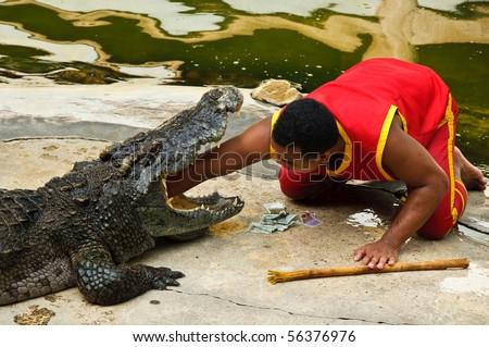 SAMUTPRAKARN, THAILAND - JUNE 11: A man puts his arm in a crocodile's mouth in a crocodile show at Samutprakarn crocodile farm & zoo June 11, 2010 in Samutprakarn, Thailand. - stock photo