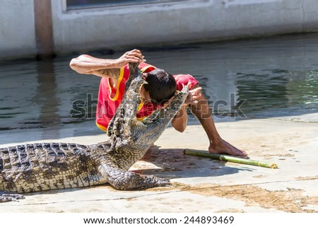 SAMUTPRAKARN,THAILAND NOVEMBER 3 : crocodile show at crocodile farm on November , 2013 in Samutprakarn,Thailand. This exciting show is very famous among among tourist and Thai people