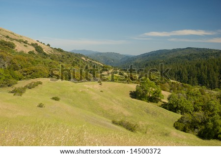 San Andreas Fault Hill Country California - stock photo