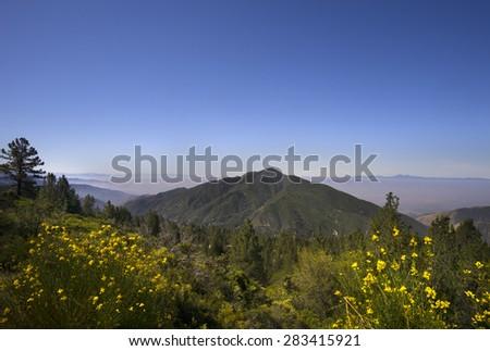 San Bernardino National Forest, Ca,USA near Big Bear Lake - stock photo